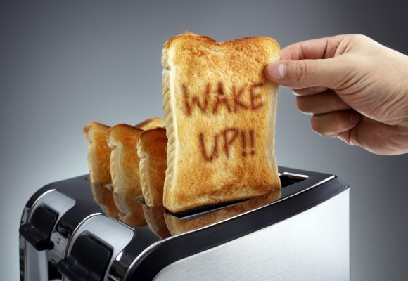toast toaster wake up on slice of bread pop up toasters
