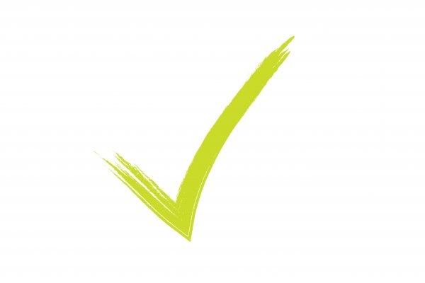 inteligator background check service green checked sign on white background