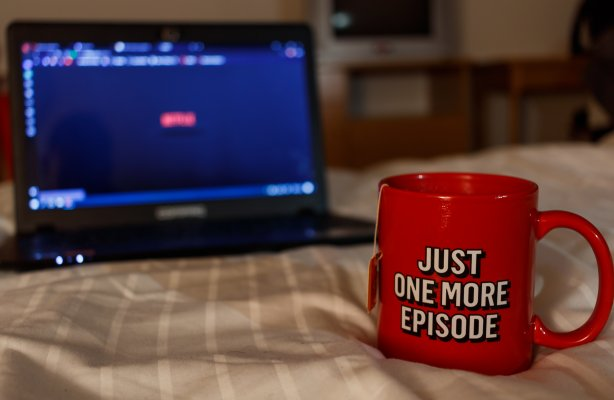 vpn services Netflix streaming watching netflix on laptop streaming red just one more episode mug